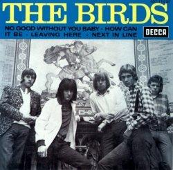 A 'band' of birds